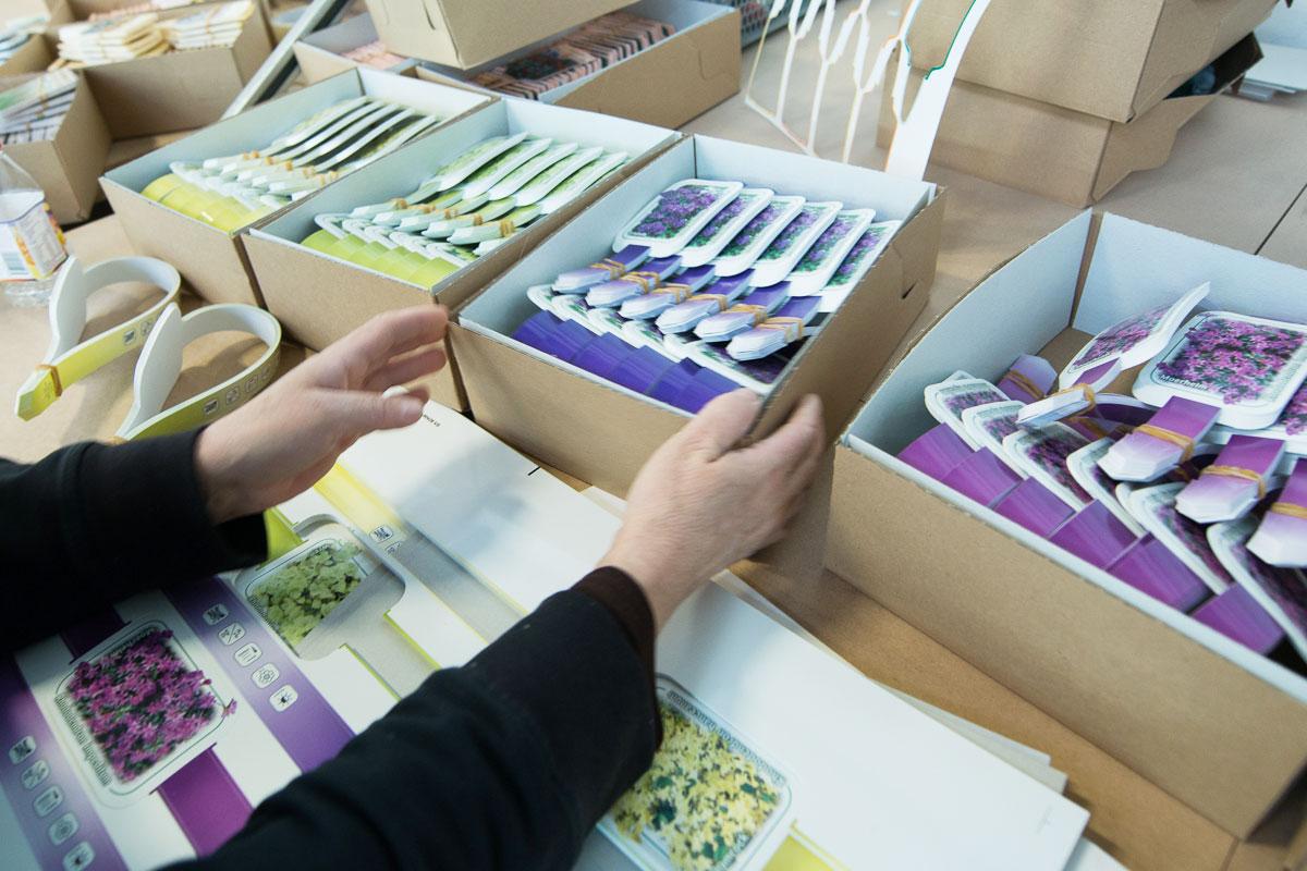 Bildetiketten für Pflanzen aus Kunststoff